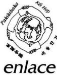 2009 Enlace Logo